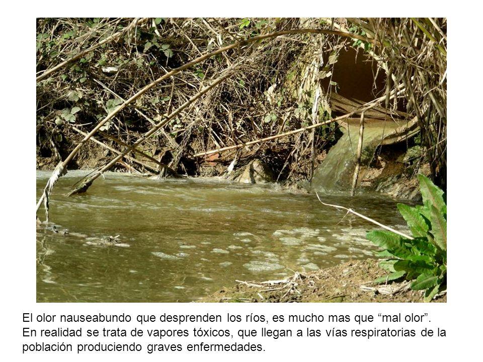 Las industrias y la población con necesidades básicas insatisfechas actúan en forma combinada volcando productos y deshechos que contaminan el agua