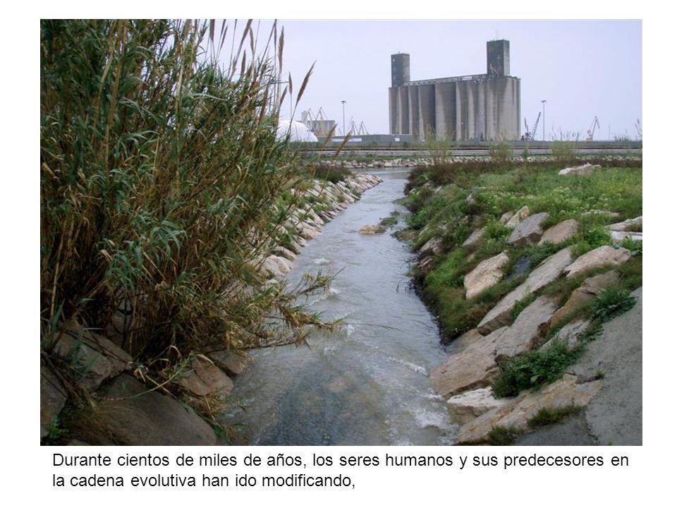 Uno de los factores que más ha contaminado es la utilización de los combustibles fósiles.