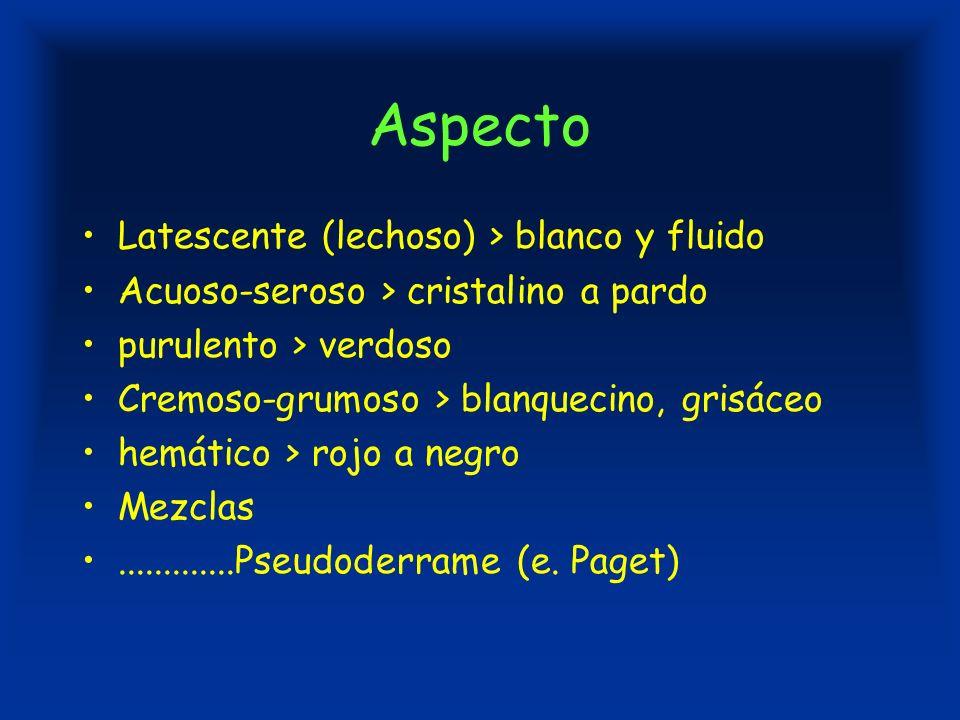 DP hemático Serohemático o sanguinolento puro Patología mamaria –Papiloma intraductal –Papilomatosis de la MFQ –Cáncer de mama Citología –Fondo hemático (sangre) –Epitelio en grupos y células sueltas