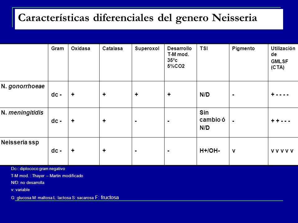 Características diferenciales del genero Neisseria GramOxidasaCatalasaSuperoxolDesarrollo T-M mod.