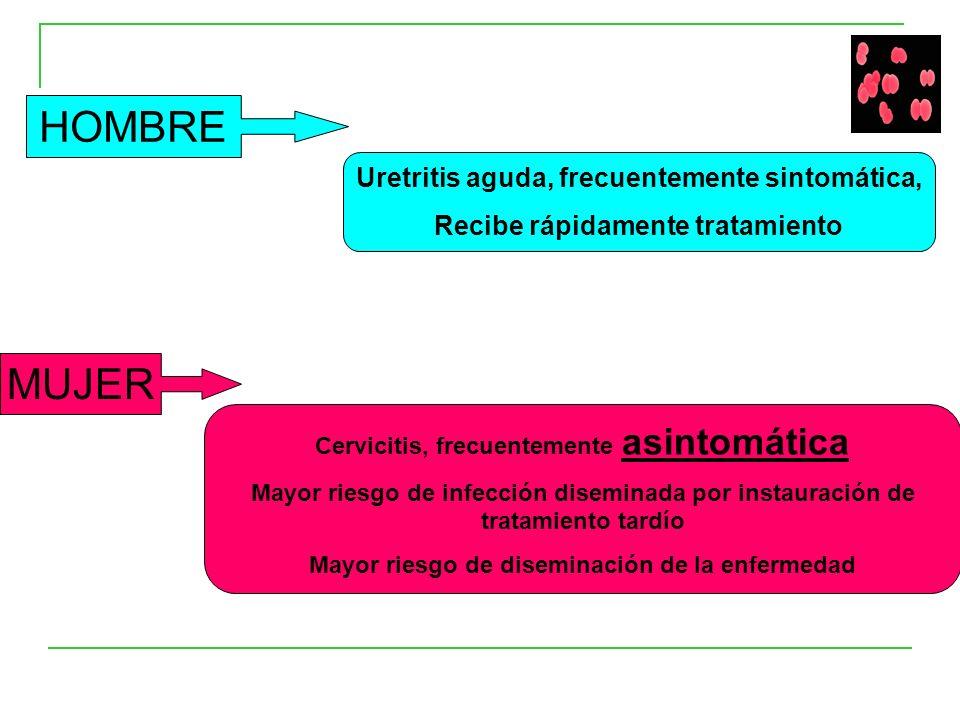 HOMBRE Uretritis aguda, frecuentemente sintomática, Recibe rápidamente tratamiento MUJER Cervicitis, frecuentemente asintomática Mayor riesgo de infección diseminada por instauración de tratamiento tardío Mayor riesgo de diseminación de la enfermedad