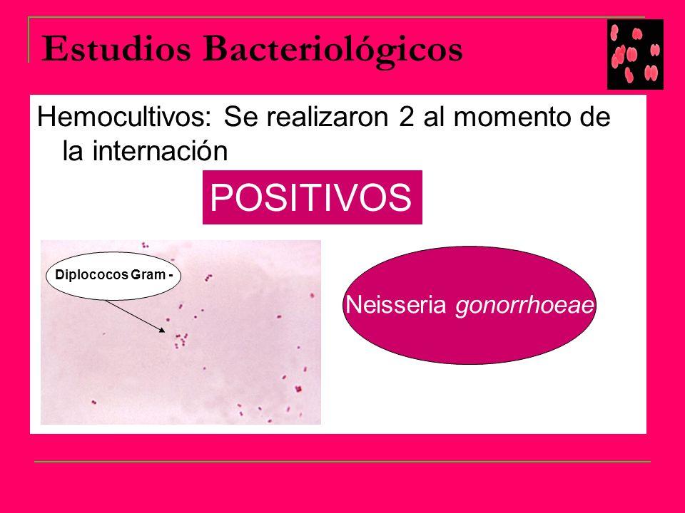 GONOCOCCEMIA Bacteriemia con infección diseminada causada por Neisseria gonorrhoeae.