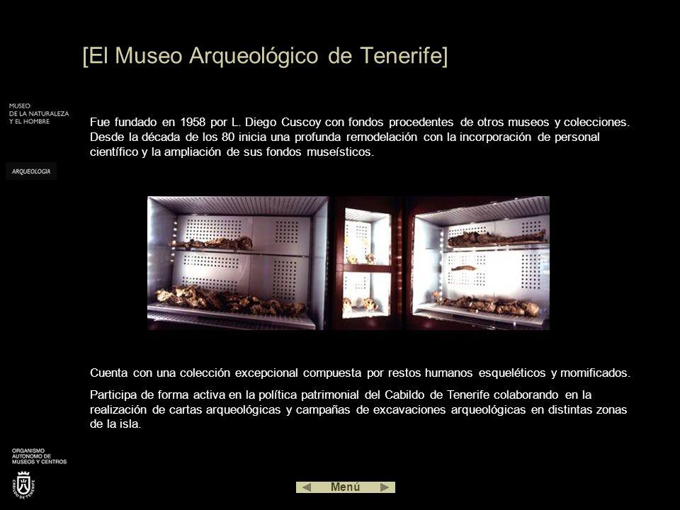 Fue fundado en 1958 por L. Diego Cuscoy con fondos procedentes de otros museos y colecciones. Desde la década de los 80 inicia una profunda remodelaci