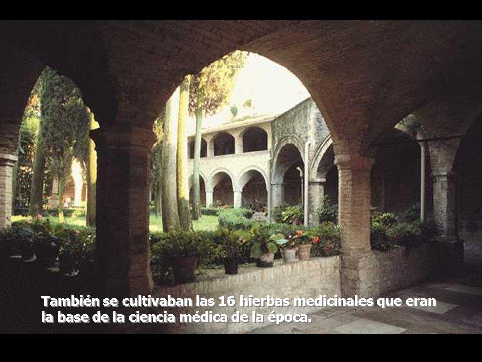Hacia finales de esta época el aumento del comercio y la riqueza permitió la aparición de jardines en los castillos medievales y casas de campo.