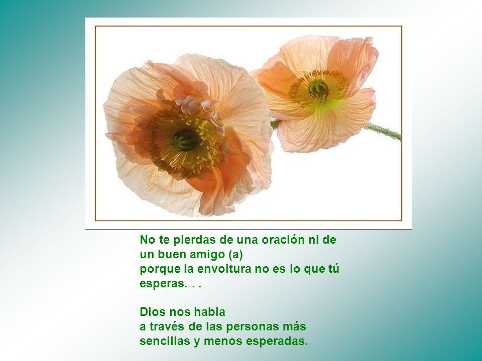 No te pierdas de una oración ni de un buen amigo (a) porque la envoltura no es lo que tú esperas...