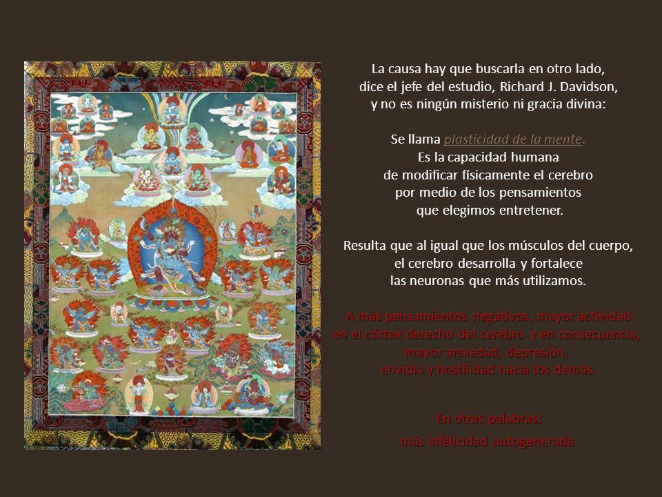 Se fue al Himalaya, adoptó el celibato y la pobreza de los monjes, aprendió a leer el tibetano clásico e inició una nueva vida desde cero.