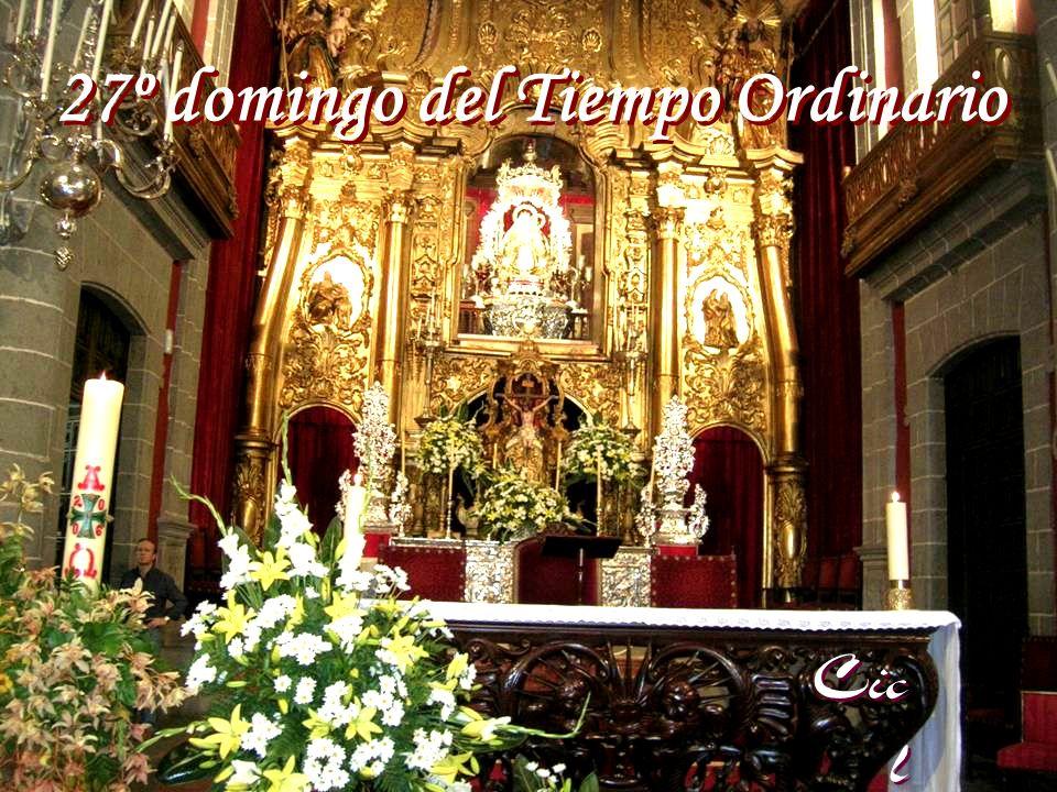 27º domingo del Tiempo Ordinario 27º domingo del Tiempo Ordinario Cic l o B Cic l o B