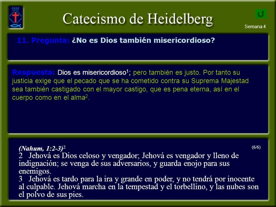 Semana 4 11.Pregunta: ¿No es Dios también misericordioso.