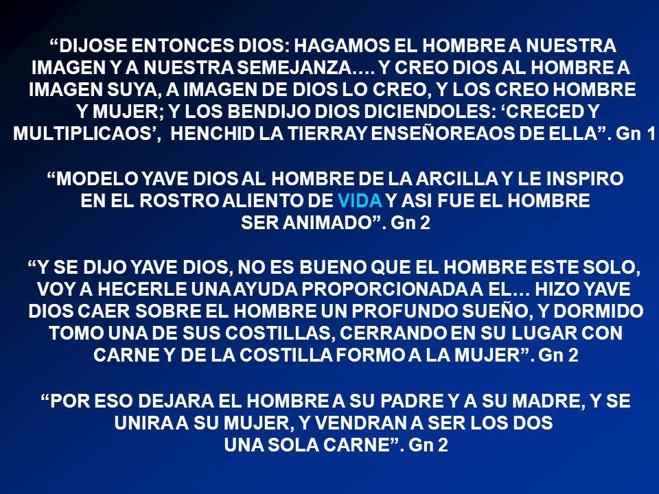 DIJOSE ENTONCES DIOS: HAGAMOS EL HOMBRE A NUESTRA IMAGEN Y A NUESTRA SEMEJANZA….
