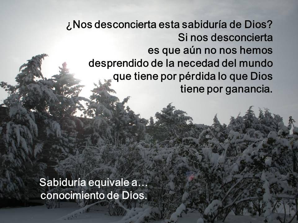 ¡Oh Sabiduría, oh Dios! Cueva, pesebre, pobreza, ésta es la sabiduría de Dios. Y la sabiduría divina nos dice que el camino de la salvación que nos ll