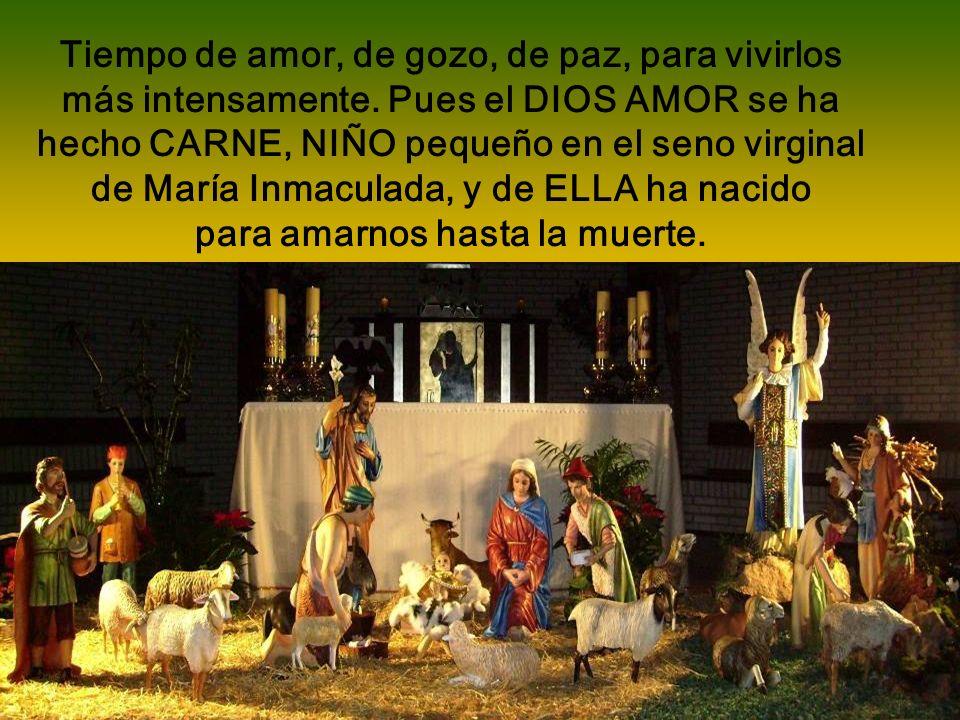 Reflexiones sobre la Navidad por la Sierva de Dios Madre Mercedes de Jesús, Monja Concepcionista de Alcázar de San Juan Avance automático