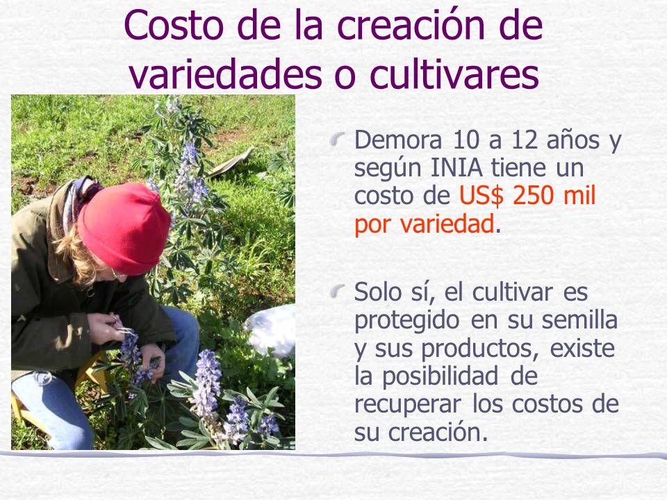 Costo de la creación de variedades o cultivares Demora 10 a 12 años y según INIA tiene un costo de US$ 250 mil por variedad. Solo sí, el cultivar es p