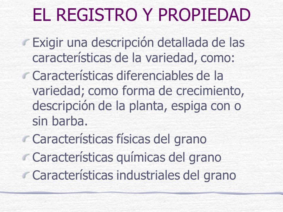 EL REGISTRO Y PROPIEDAD Exigir una descripción detallada de las características de la variedad, como: Características diferenciables de la variedad; como forma de crecimiento, descripción de la planta, espiga con o sin barba.