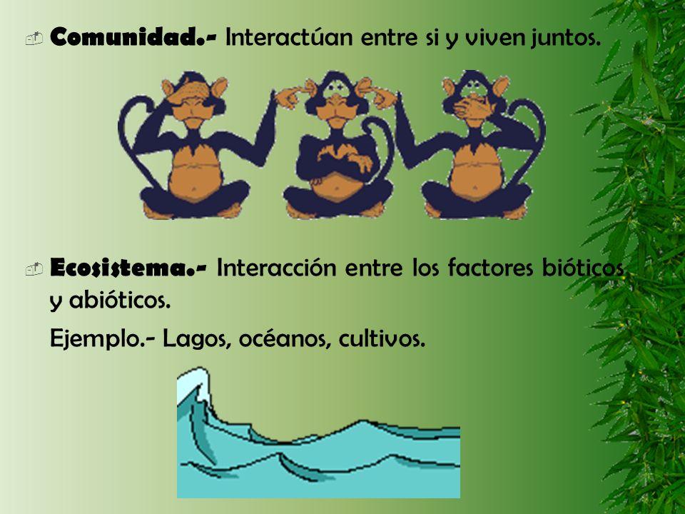 Comunidad.- Interactúan entre si y viven juntos. Ecosistema.- Interacción entre los factores bióticos y abióticos. Ejemplo.- Lagos, océanos, cultivos.