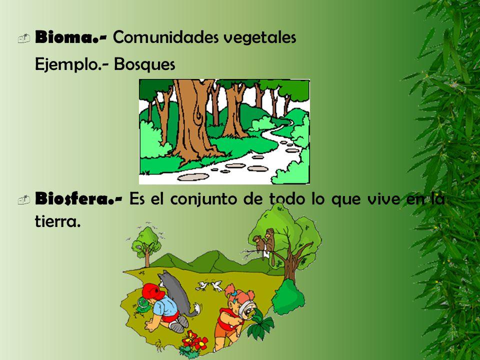 Bioma.- Comunidades vegetales Ejemplo.- Bosques Biosfera.- Es el conjunto de todo lo que vive en la tierra.