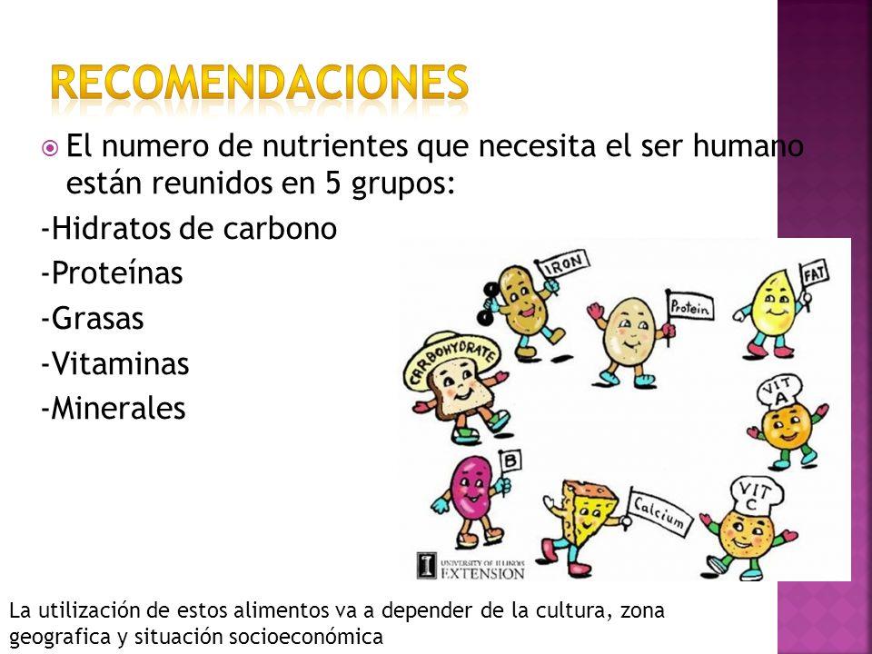 El numero de nutrientes que necesita el ser humano están reunidos en 5 grupos: -Hidratos de carbono -Proteínas -Grasas -Vitaminas -Minerales La utiliz