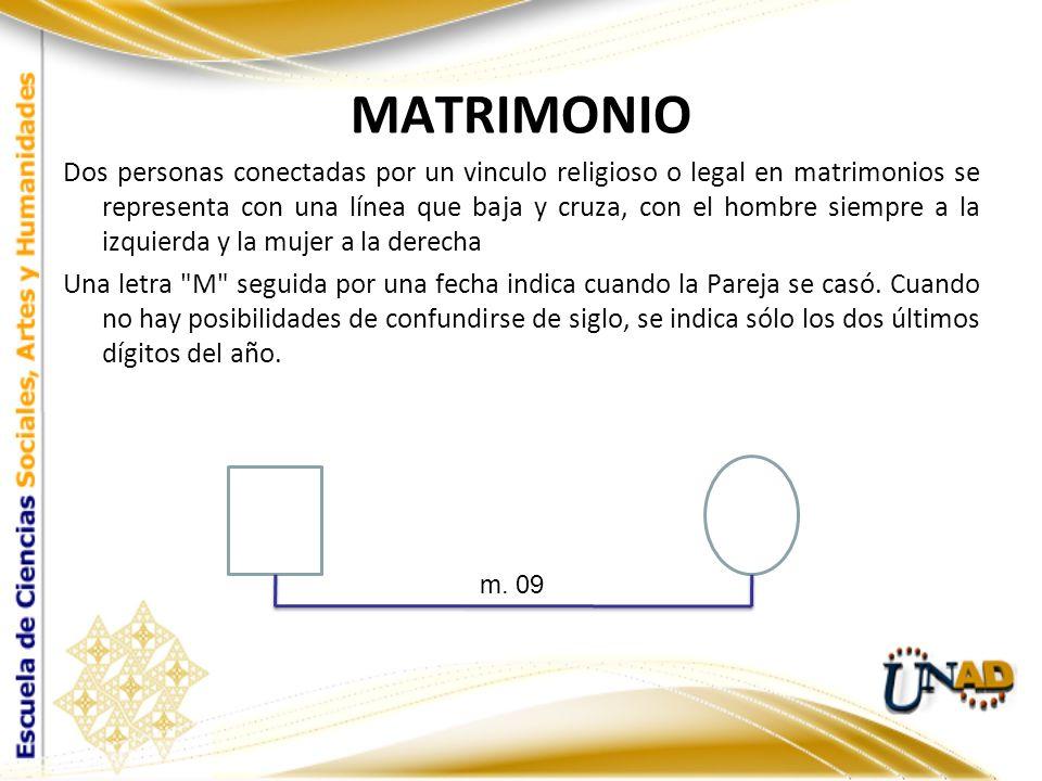 La línea que los une también es el lugar donde las separaciones y divorcios se indican, las líneas oblicuas significan una interrupción en el matrimonio: 1 diagonal para separación y 2 para un divorcio Separación Divorcio // / m.