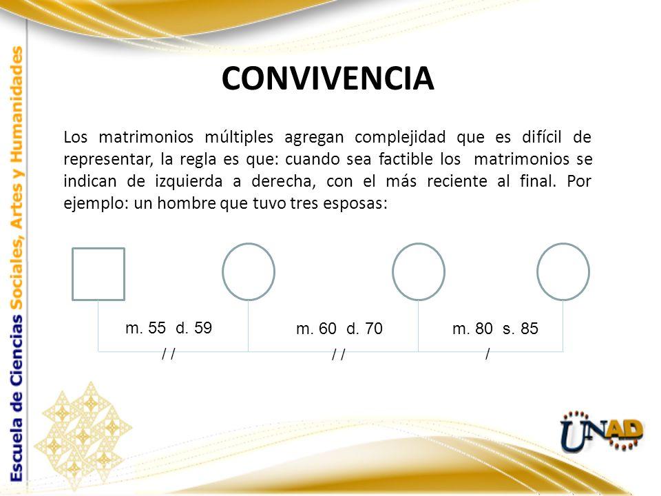 m. 55 d. 59 m. 60 d. 70m. 80 s. 85 / / CONVIVENCIA Los matrimonios múltiples agregan complejidad que es difícil de representar, la regla es que: cuand