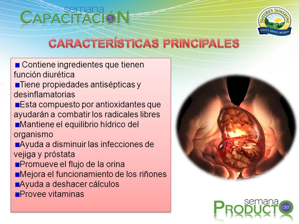 Contiene ingredientes que tienen función diurética Tiene propiedades antisépticas y desinflamatorias Esta compuesto por antioxidantes que ayudarán a c