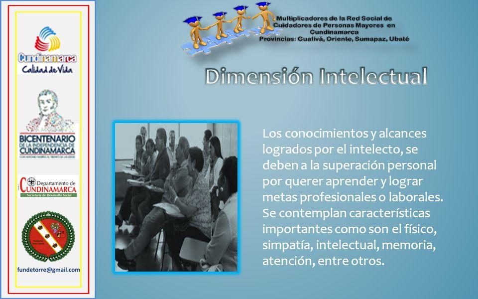 Los conocimientos y alcances logrados por el intelecto, se deben a la superación personal por querer aprender y lograr metas profesionales o laborales.