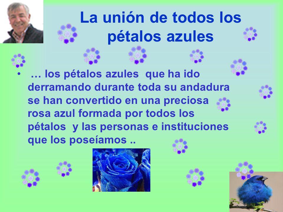La unión de todos los pétalos azules … los pétalos azules que ha ido derramando durante toda su andadura se han convertido en una preciosa rosa azul formada por todos los pétalos y las personas e instituciones que los poseíamos..