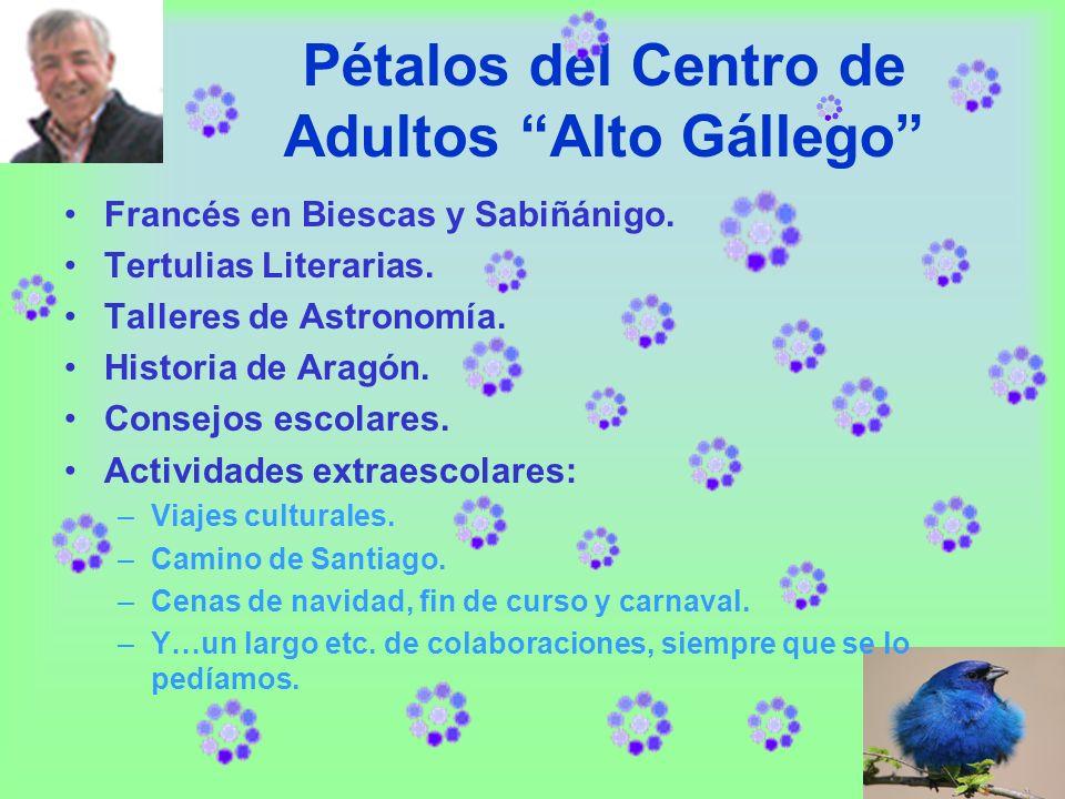Pétalos del Centro de Adultos Alto Gállego Francés en Biescas y Sabiñánigo.