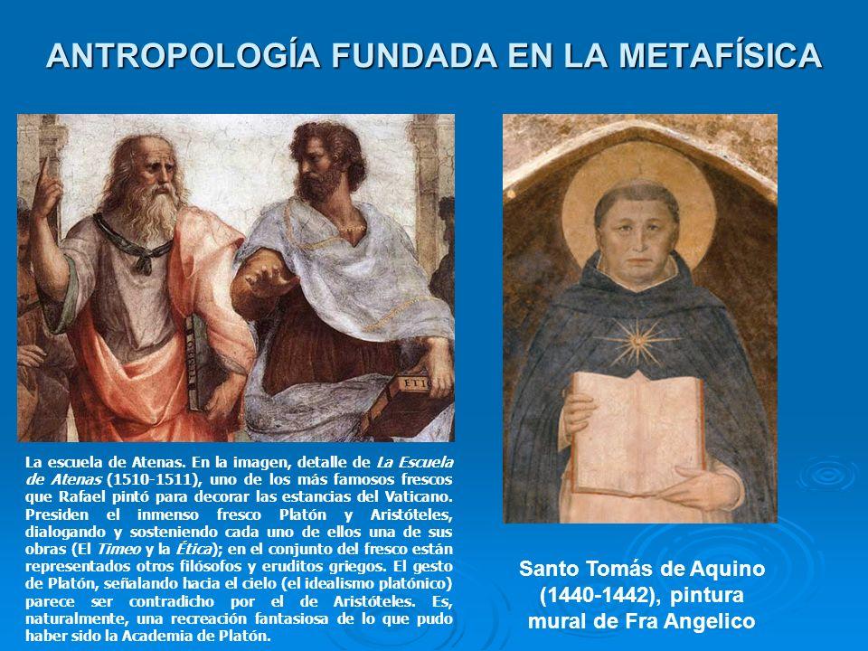 ANTROPOLOGÍA FUNDADA EN LA METAFÍSICA Santo Tomás de Aquino (1440-1442), pintura mural de Fra Angelico La escuela de Atenas. En la imagen, detalle de