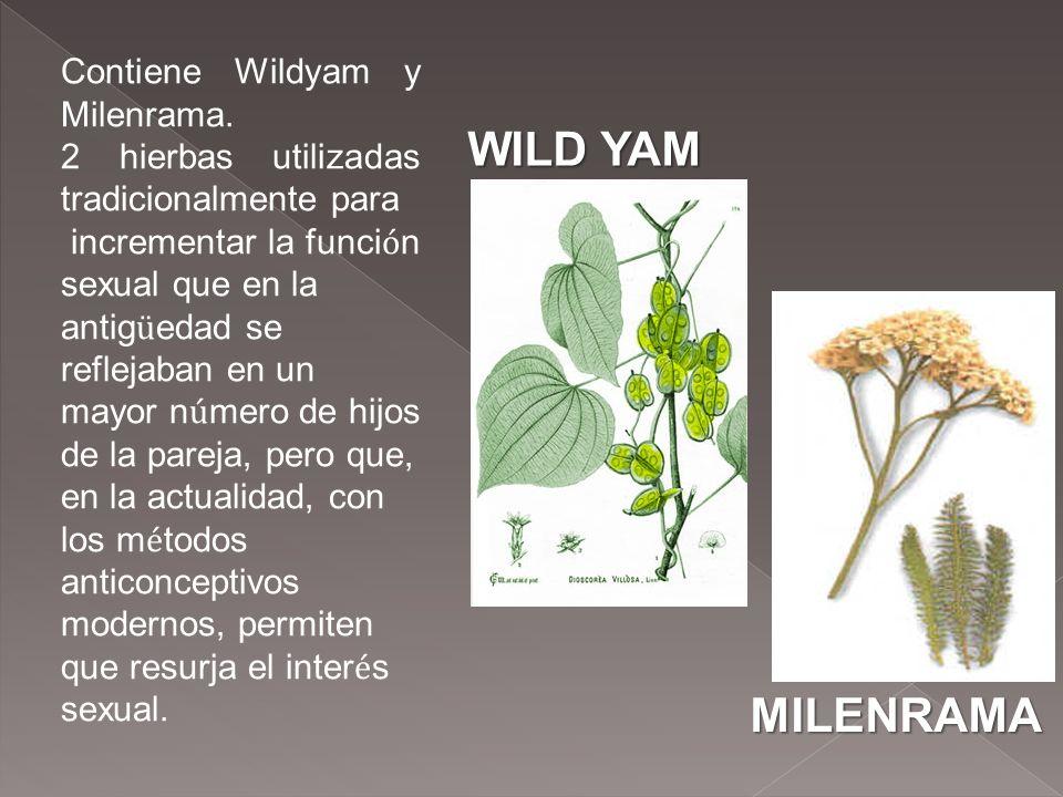 Contiene Wildyam y Milenrama. 2 hierbas utilizadas tradicionalmente para incrementar la funci ó n sexual que en la antig ü edad se reflejaban en un ma