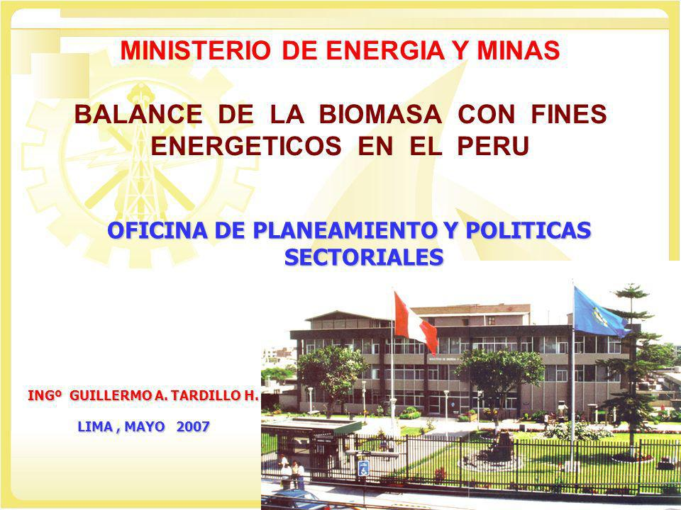 OFICINA DE PLANEAMIENTO Y POLITICAS SECTORIALES MINISTERIO DE ENERGIA Y MINAS BALANCE DE LA BIOMASA CON FINES ENERGETICOS EN EL PERU INGº GUILLERMO A.