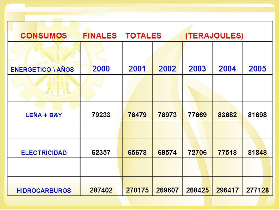 CONSUMOSFINALESTOTALES(TERAJOULES) ENERGETICO \ AÑOS 200020012002200320042005 LEÑA + B&Y 792337847978973776698368281898 ELECTRICIDAD 62357656786957472