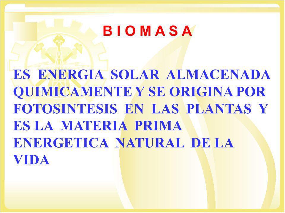 ES ENERGIA SOLAR ALMACENADA QUIMICAMENTE Y SE ORIGINA POR FOTOSINTESIS EN LAS PLANTAS Y ES LA MATERIA PRIMA ENERGETICA NATURAL DE LA VIDA