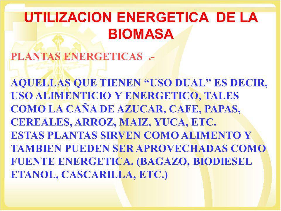 UTILIZACION ENERGETICA DE LA BIOMASA MATERIAS RESIDUALES Y DE DESECHO.- PROVIENEN DE : LA AGRICULTURA (BAGAZO, CASCARILLA DE ARROZ, BROZA DE ALGODÓN, ETC.) EXPLOTACION MADERERA Y SILVICULTURA (LEÑA, ASTILLAS, ASERRIN) DE LOS SECTORES DOMÉSTICO E INDUSTRIAL (BOSTA, BIOGAS, RESIDUOS URBANOS(BASURA) ETC.)