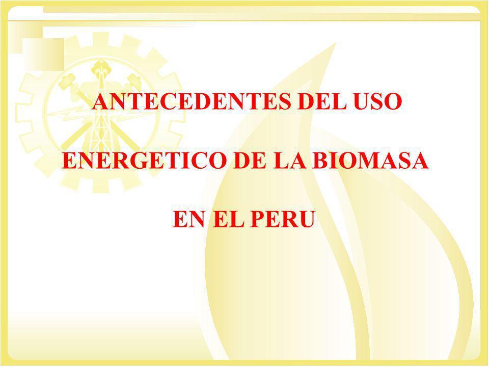 ANTECEDENTES DEL USO ENERGETICO DE LA BIOMASA EN EL PERU