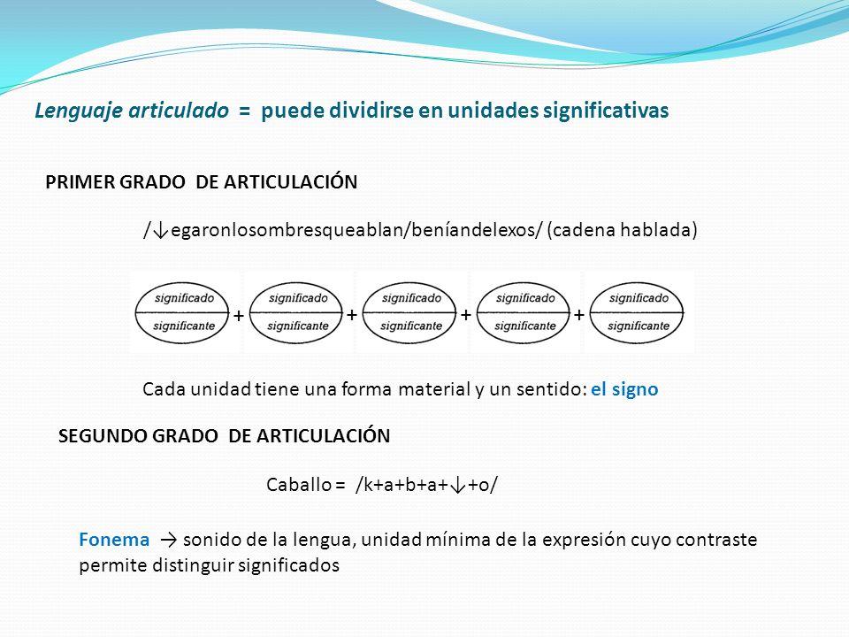 Lenguaje articulado = puede dividirse en unidades significativas PRIMER GRADO DE ARTICULACIÓN /egaronlosombresqueablan/beníandelexos/ (cadena hablada)