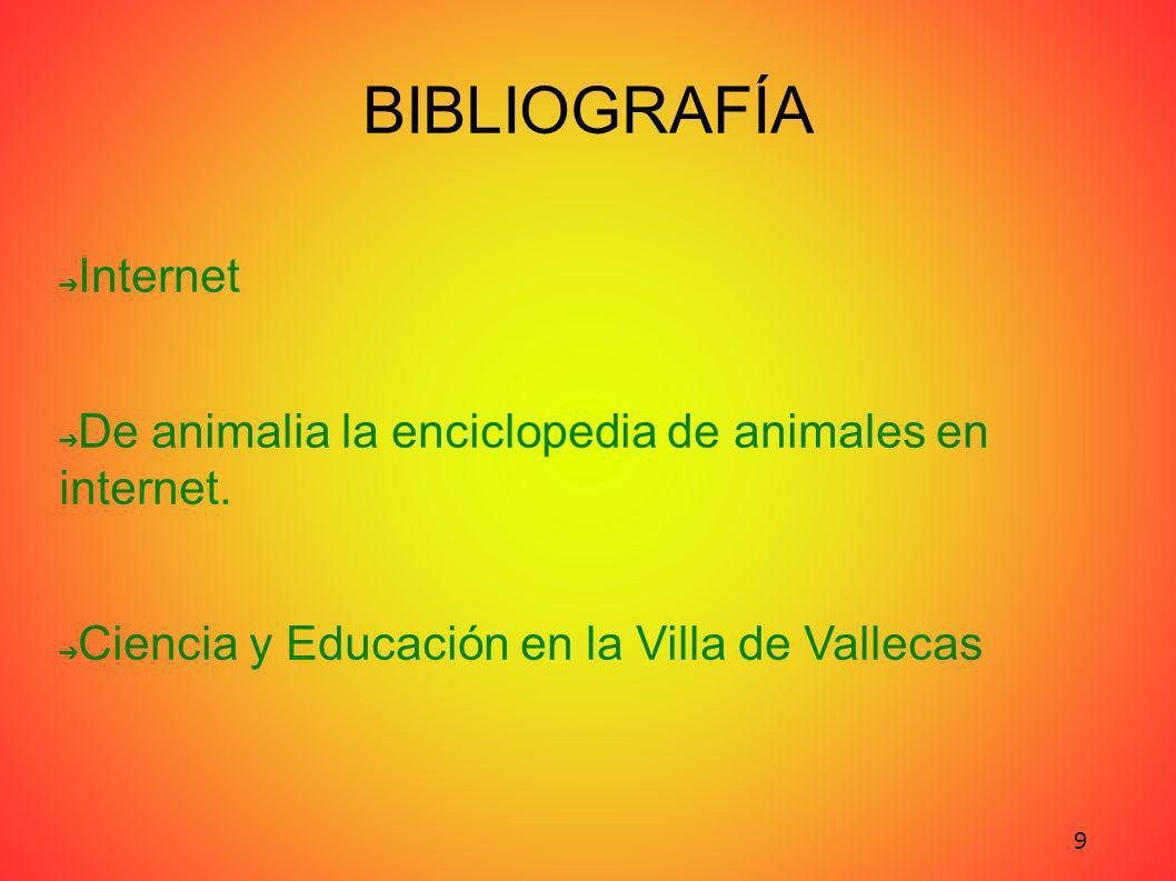 BIBLIOGRAFÍA Internet De animalia la enciclopedia de animales en internet.