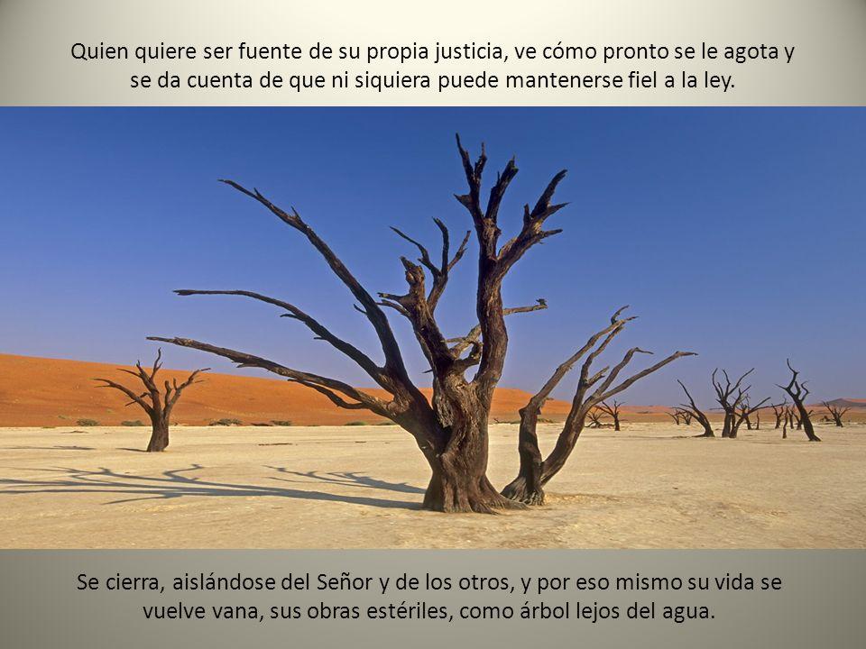 Quien quiere ser fuente de su propia justicia, ve cómo pronto se le agota y se da cuenta de que ni siquiera puede mantenerse fiel a la ley.