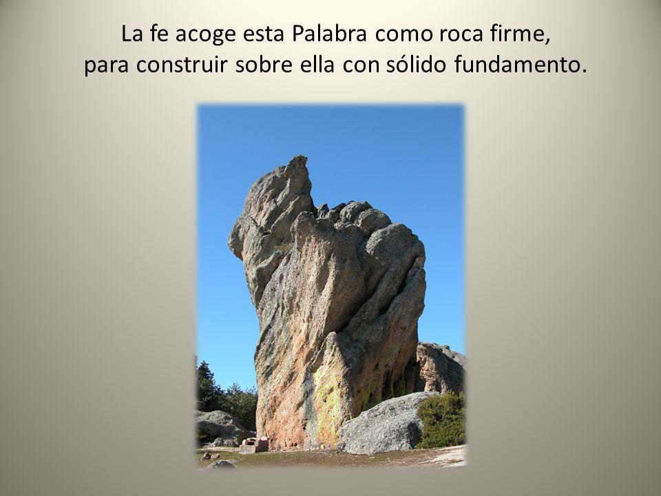 La fe acoge esta Palabra como roca firme, para construir sobre ella con sólido fundamento.