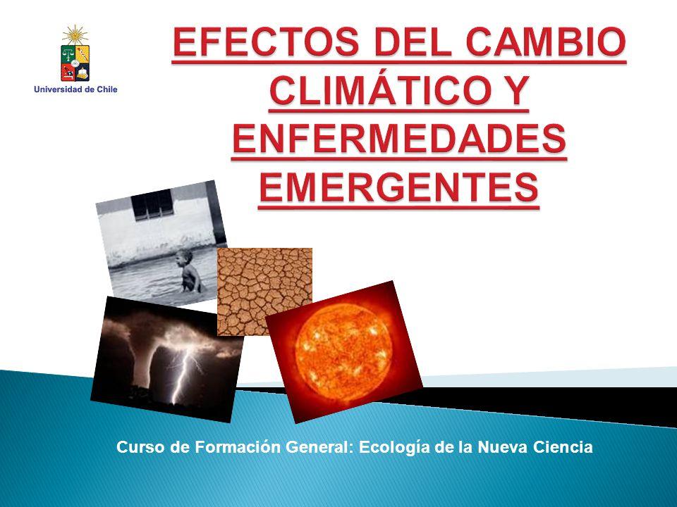 Curso de Formación General: Ecología de la Nueva Ciencia