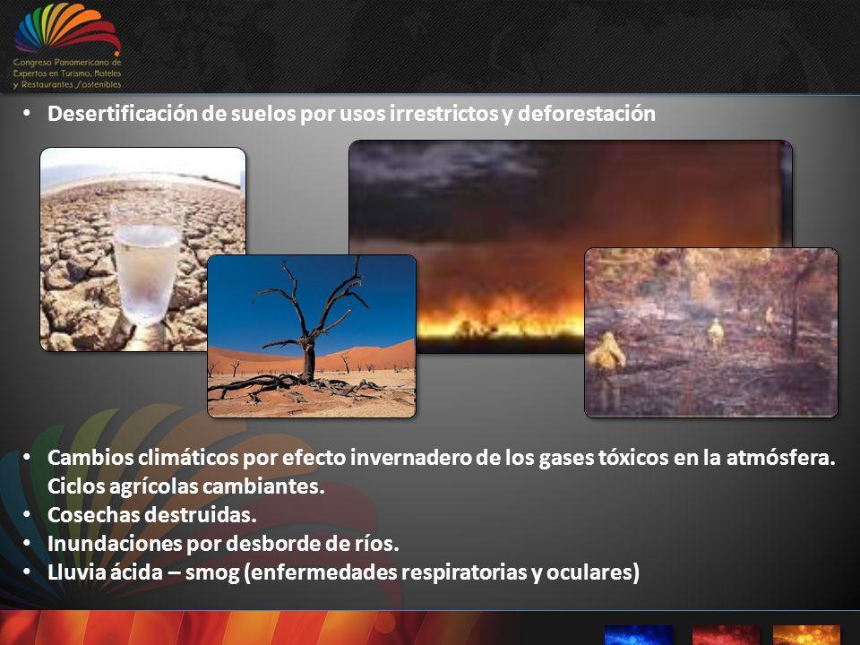 Desertificación de suelos por usos irrestrictos y deforestación Cambios climáticos por efecto invernadero de los gases tóxicos en la atmósfera. Ciclos