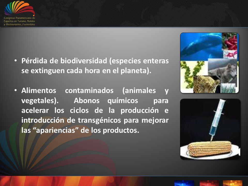 Pérdida de biodiversidad (especies enteras se extinguen cada hora en el planeta). Alimentos contaminados (animales y vegetales). Abonos químicos para
