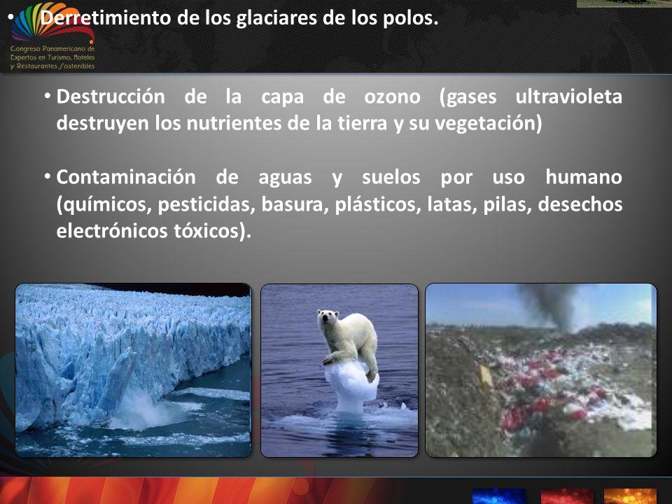 Derretimiento de los glaciares de los polos. Destrucción de la capa de ozono (gases ultravioleta destruyen los nutrientes de la tierra y su vegetación