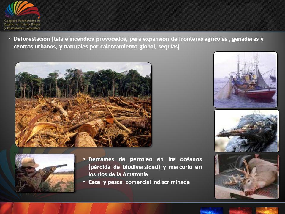 Deforestación (tala e incendios provocados, para expansión de fronteras agrícolas, ganaderas y centros urbanos, y naturales por calentamiento global,