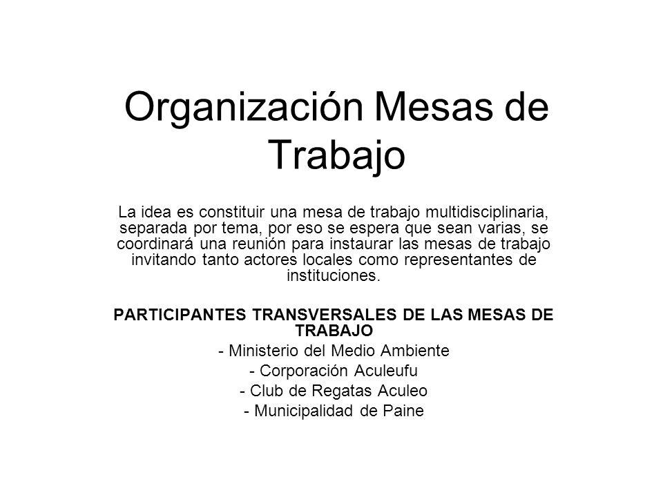 Organización Mesas de Trabajo La idea es constituir una mesa de trabajo multidisciplinaria, separada por tema, por eso se espera que sean varias, se coordinará una reunión para instaurar las mesas de trabajo invitando tanto actores locales como representantes de instituciones.