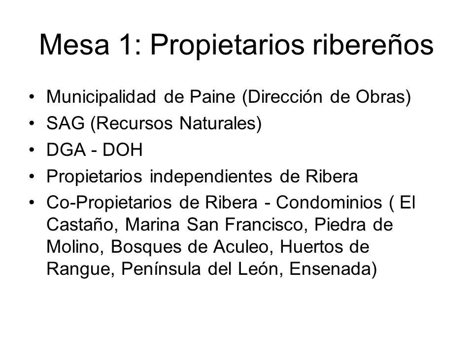 Mesa 1: Propietarios ribereños Municipalidad de Paine (Dirección de Obras) SAG (Recursos Naturales) DGA - DOH Propietarios independientes de Ribera Co