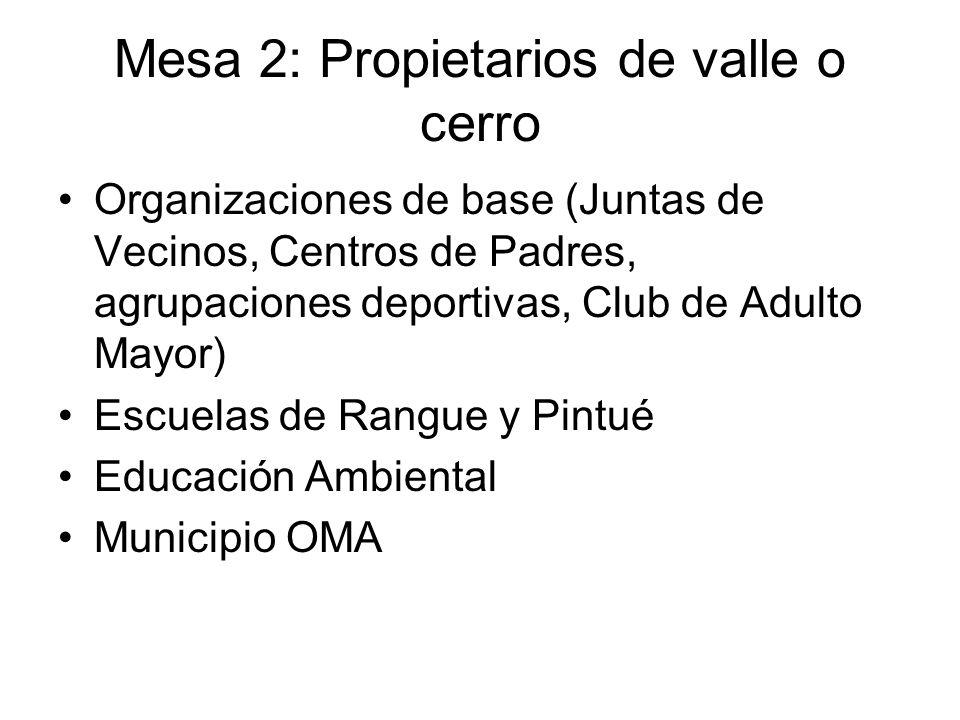 Mesa 2: Propietarios de valle o cerro Organizaciones de base (Juntas de Vecinos, Centros de Padres, agrupaciones deportivas, Club de Adulto Mayor) Escuelas de Rangue y Pintué Educación Ambiental Municipio OMA