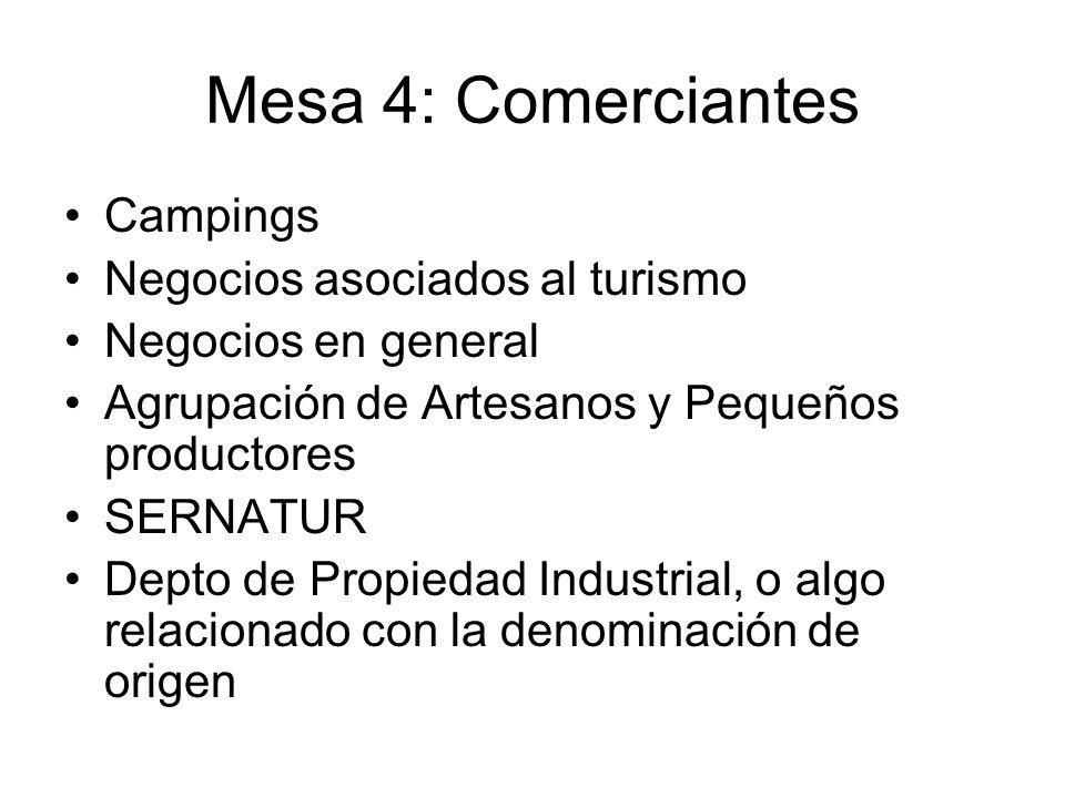 Mesa 4: Comerciantes Campings Negocios asociados al turismo Negocios en general Agrupación de Artesanos y Pequeños productores SERNATUR Depto de Propiedad Industrial, o algo relacionado con la denominación de origen