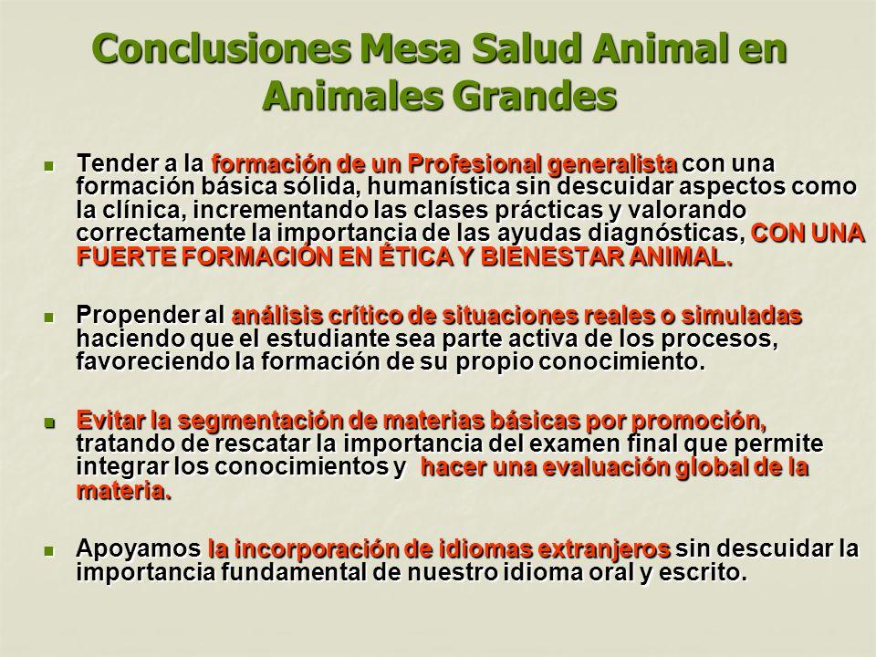 Conclusiones Mesa Salud Animal en Animales Grandes Tender a la formación de un Profesional generalista con una formación básica sólida, humanística si