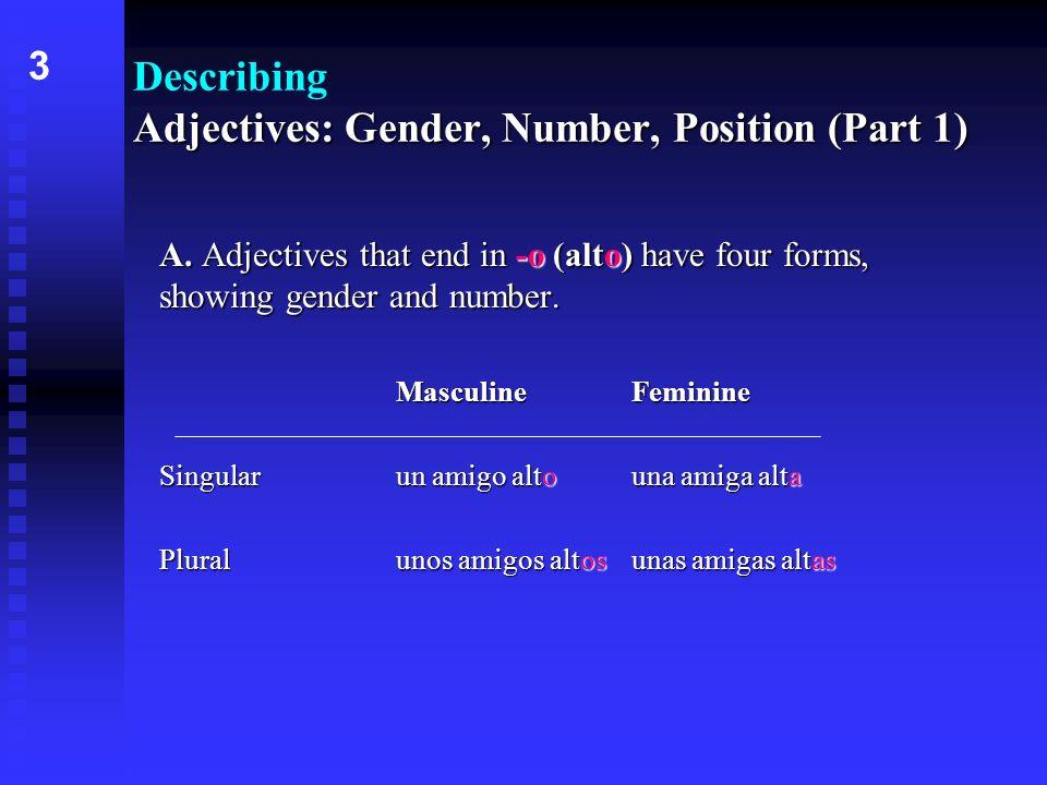 Adjectives: Gender, Number, Position (Part 1) Describing Adjectives: Gender, Number, Position (Part 1) -oo A.