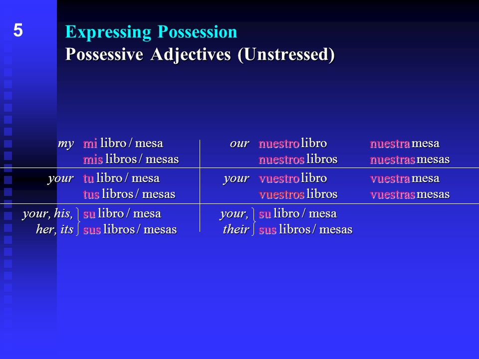 Possessive Adjectives (Unstressed) Expressing Possession Possessive Adjectives (Unstressed) mymi libro / mesa mis libros / mesas yourtu libro / mesa t