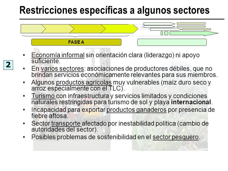 Restricciones específicas a algunos sectores Economía informal sin orientación clara (liderazgo) ni apoyo suficiente. En varios sectores: asociaciones